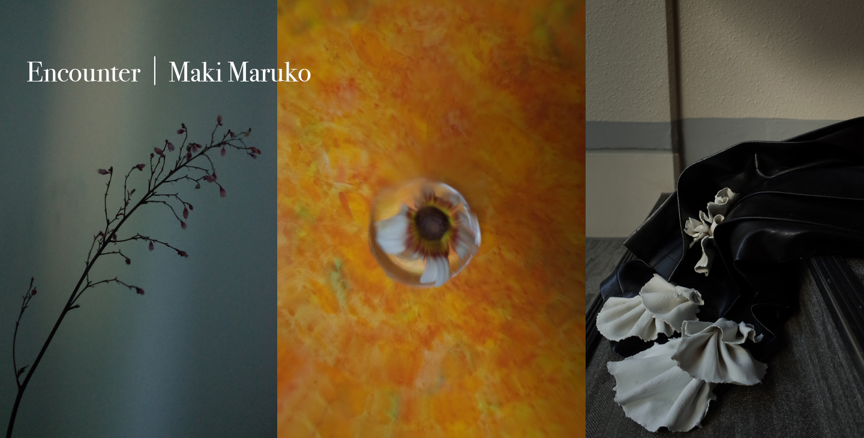 Encounter|Maki Maruko